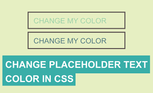 آموزش تغییر دادن رنگ Placeholder با استفاده از CSS