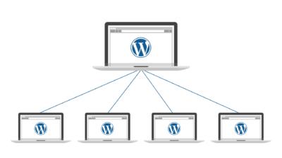 نحوه ی نصب و فعال سازی وردپرس شبکه