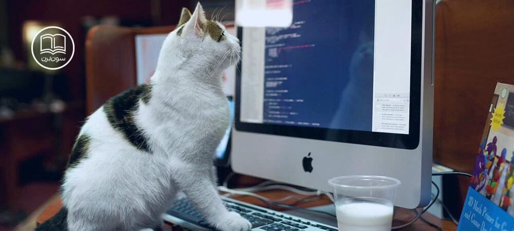 programming چیست؟