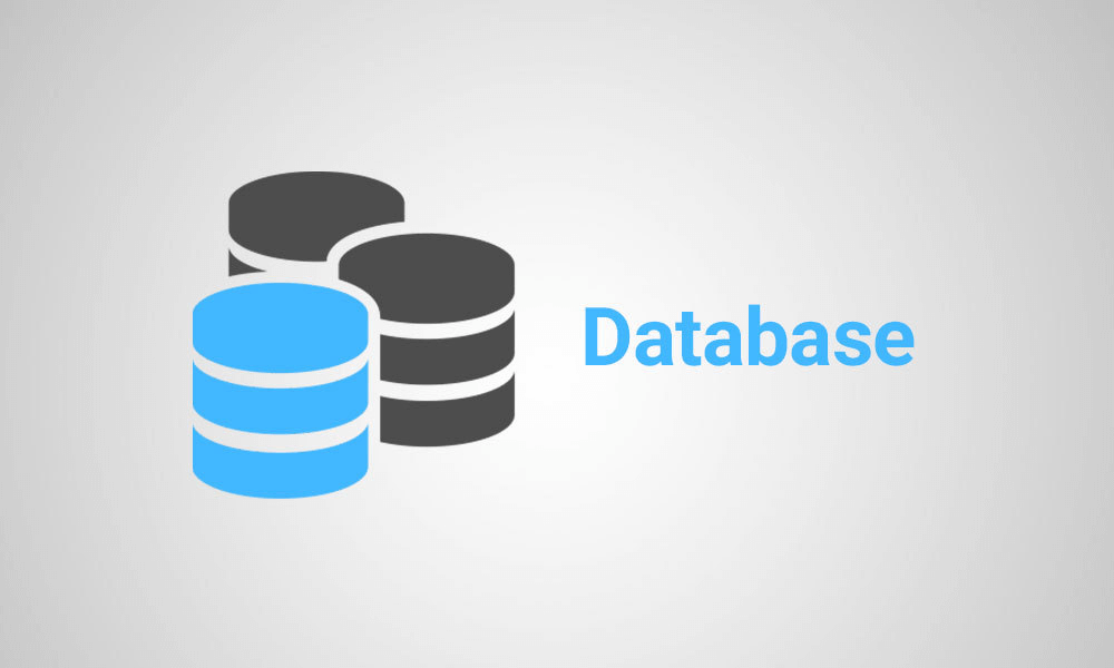 پایگاه داده چیست