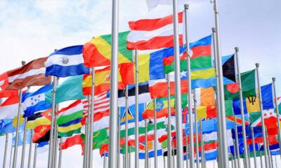 شرایط مهاجرت از طریق برنامه نویسی به بهترین کشور های متقاضی