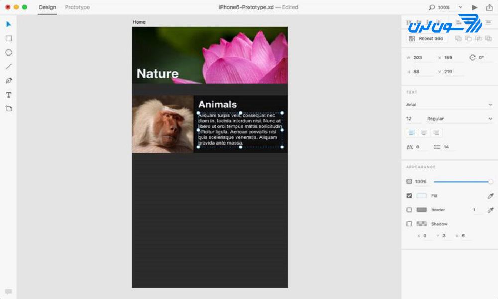 افزودن محتوا در Adobe XD