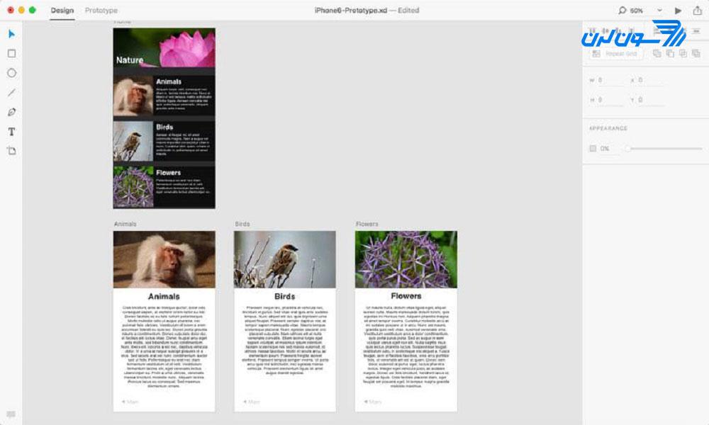 تعیین صفحهی اصلی پروژه در Adobe XD