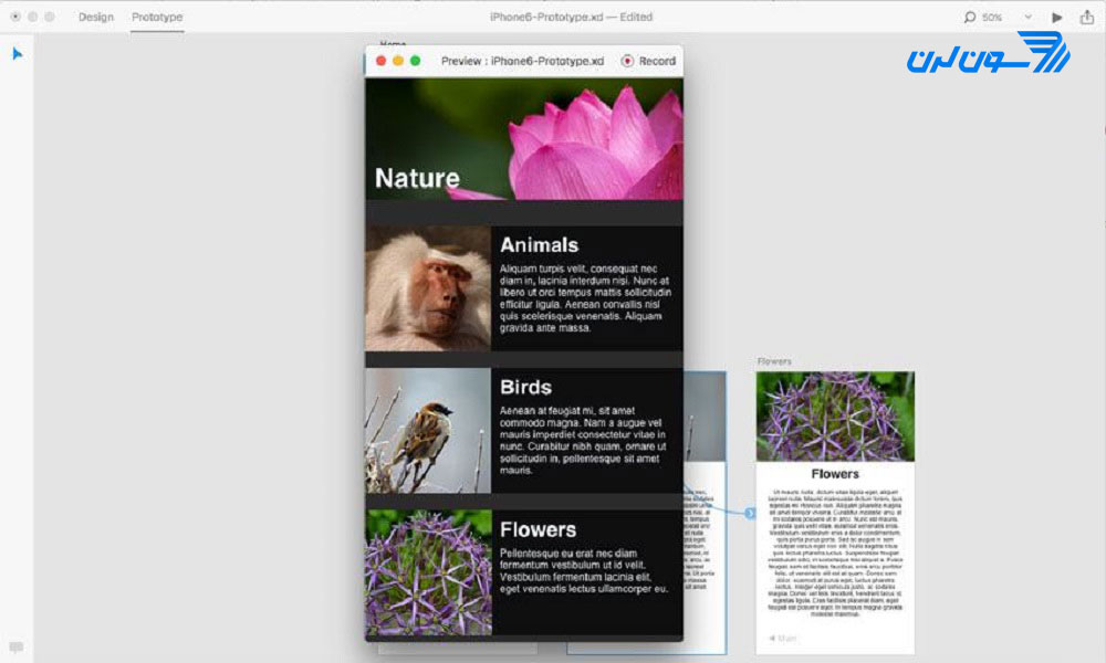 پیشنمایش Prototype در Adobe XD