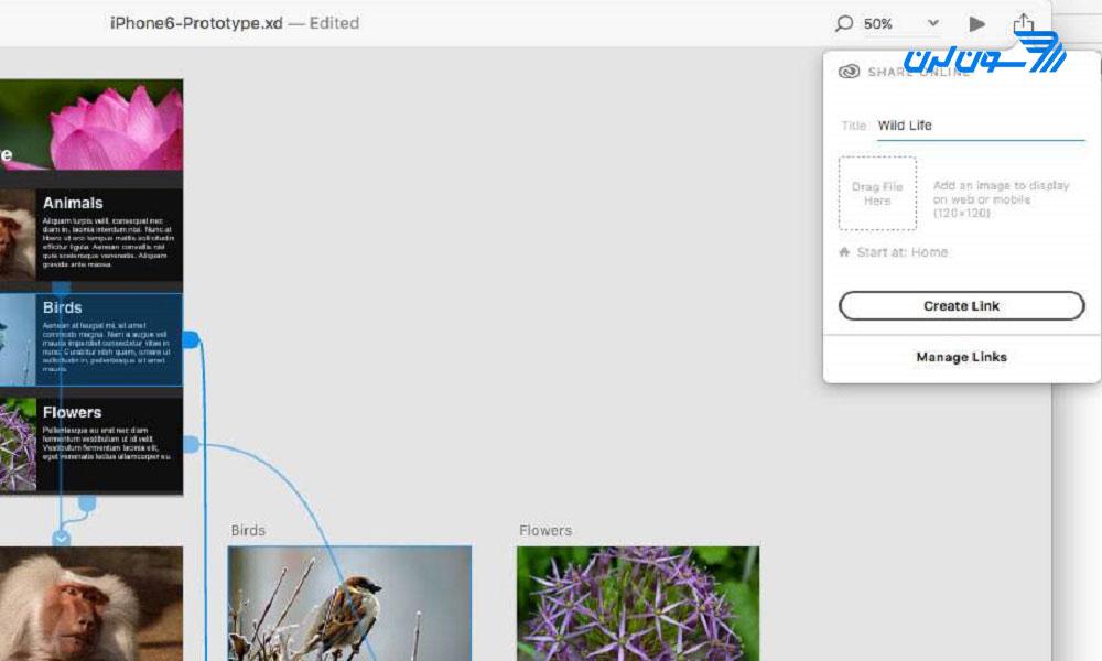 اشتراکگذاری Prototype در Adobe XD
